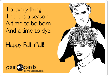 To every thing
