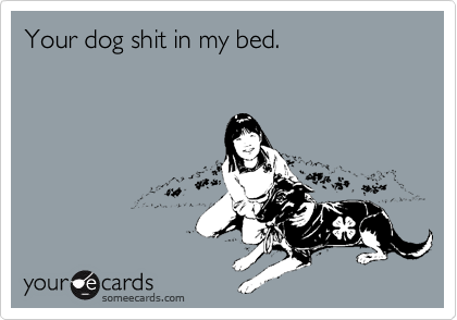 Your dog shit in my bed.