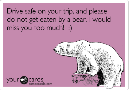 Drive safe on your trip, and please do not get eaten by a bear, I would miss you too much!  :)