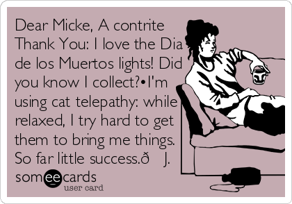 Dear Micke, A contrite Thank You: I love the Dia de los Muertos lights! Did you know I collect?•I'm  using cat telepathy: while relaxed, I try hard to get them to bring me things.  So far little success.?J.