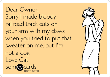 Dear Owner, Sorry I made bloody railroad track cuts on your arm with my claws when you tried to put that sweater on me, but I'm not a dog. Love Cat
