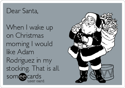 Dear Santa,  When I wake up on Christmas morning I would like Adam Rodriguez in my  stocking. That is all.