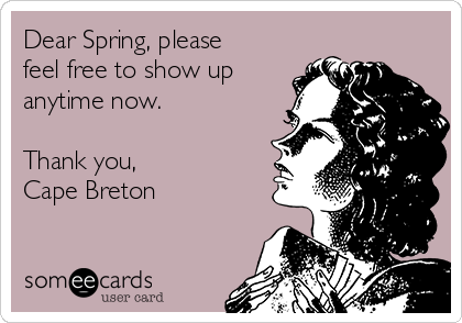 Dear Spring, please feel free to show up anytime now.  Thank you,  Cape Breton
