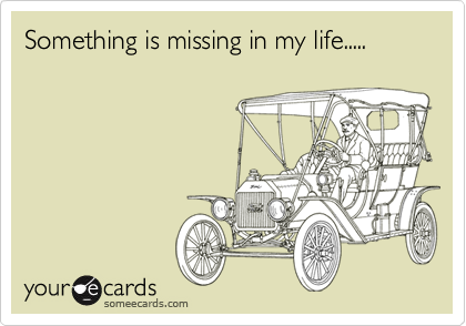 Something is missing in my life.....