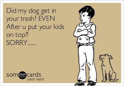 Did my dog get in your trash? EVEN After u put your kids on top?!  SORRY.......