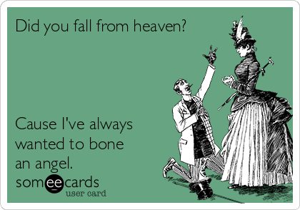 Did you fall from heaven?     Cause I've always wanted to bone an angel.