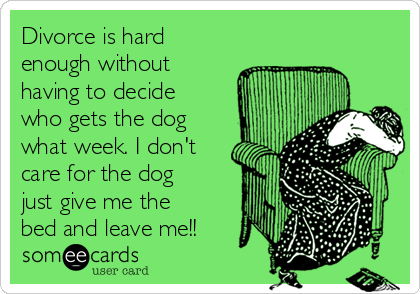 Divorce is hard enough without having to decide  who gets the dog what week. I don't care for the dog just give me the bed and leave me!!