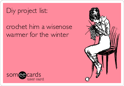 Diy project list:  crochet him a wisenose warmer for the winter