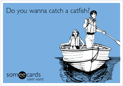 Do you wanna catch a catfish?