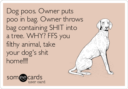 Dog poos. Owner puts poo in bag. Owner throws bag containing SHIT into a tree. WHY? FFS you filthy animal, take your dog's shit home!!!!