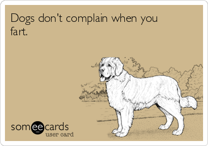 Dogs don't complain when you fart.