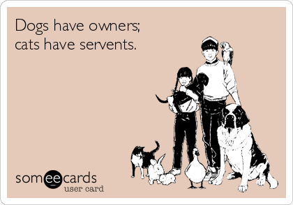 Dogs have owners; cats have servents.