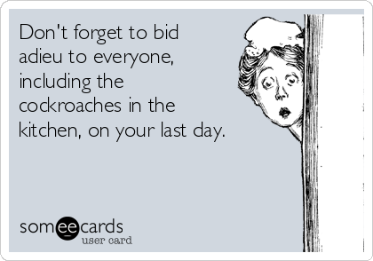 Don't forget to bid adieu to everyone, including the cockroaches in the kitchen, on your last day.
