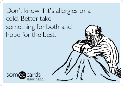 Don't know if it's allergies or a cold. Better take something for both and hope for the best.