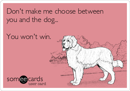 Don't make me choose between you and the dog...  You won't win.