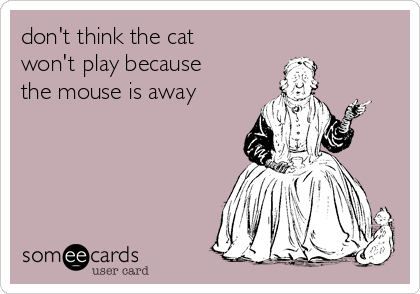 don't think the cat won't play because the mouse is away