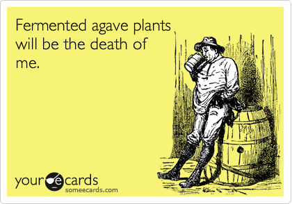Fermented agave plants