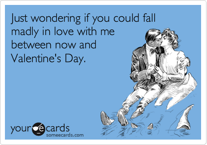 Just wondering if you could fall madly in love with mebetween now andValentine's Day.