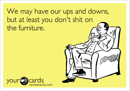 We may have our ups and downs, but at least you don't shit on the furniture.