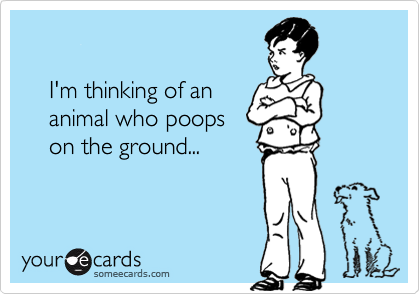 I'm thinking of an