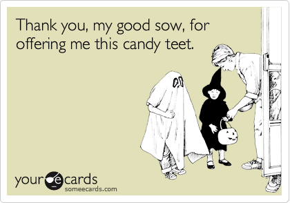 Thank you, my good sow, for offering me this candy teet.
