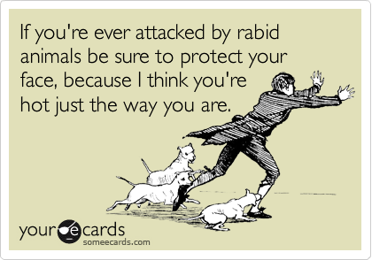 If you're ever attacked by rabid animals be sure to protect your face, because I think you're hot just the way you are.