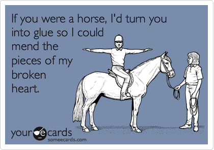 If you were a horse, I'd turn you into glue so I couldmend the pieces of mybroken heart.