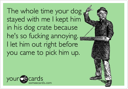 The whole time your dog