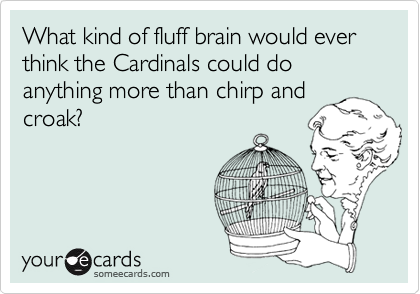 What kind of fluff brain would ever think the Cardinals could do anything more than chirp and