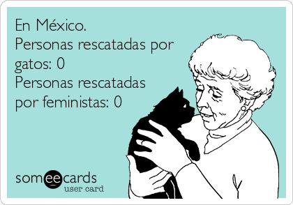En México. Personas rescatadas por gatos: 0 Personas rescatadas por feministas: 0