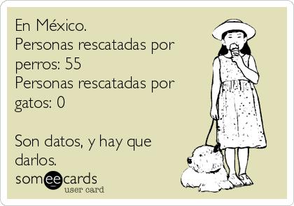 En México. Personas rescatadas por perros: 55 Personas rescatadas por gatos: 0  Son datos, y hay que darlos.