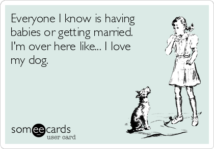 Everyone I know is having  babies or getting married. I'm over here like... I love my dog.