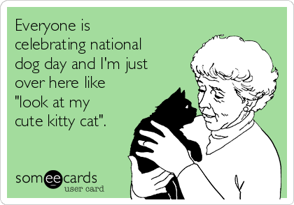 """Everyone is celebrating national dog day and I'm just over here like """"look at my cute kitty cat""""."""