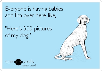 """Everyone is having babies and I'm over here like,  """"Here's 500 pictures of my dog."""""""