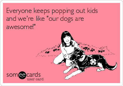 """Everyone keeps popping out kids and we're like """"our dogs are awesome!"""""""
