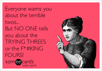 Everyone warns you about the terrible twos...  But NO ONE tells you about the TRYING THREES or the F*#KING FOURS!