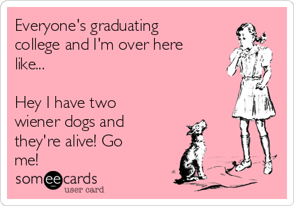 Everyone's graduating college and I'm over here like...   Hey I have two wiener dogs and they're alive! Go me!