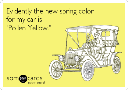 "Evidently the new spring color for my car is ""Pollen Yellow."""