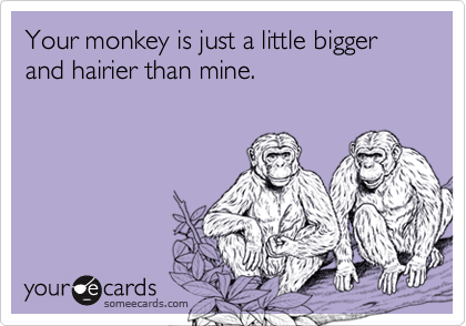 Your monkey is just a little bigger and hairier than mine.