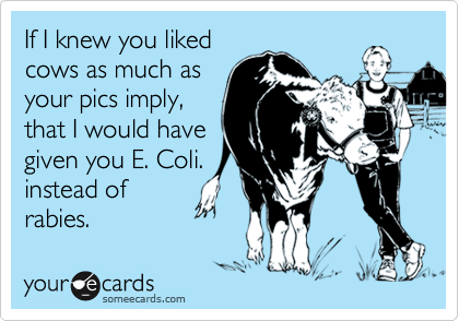If I knew you liked cows as much as your pics imply, that I would have given you E. Coli. instead of rabies.