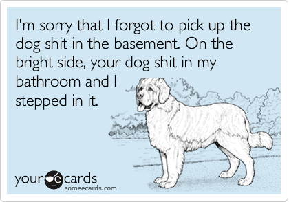 I'm sorry that I forgot to pick up the dog shit in the basement. On the bright side, your dog shit in my bathroom and Istepped in it.