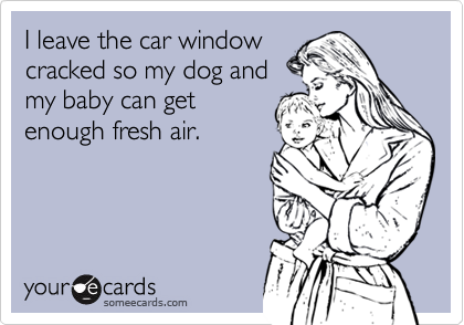 I leave the car windowcracked so my dog andmy baby can getenough fresh air.