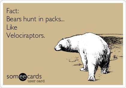 Fact: Bears hunt in packs...  Like Velociraptors.