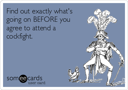 Find out exactly what's going on BEFORE you agree to attend a cockfight.