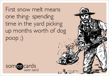 First snow melt means one thing- spending time in the yard picking up months worth of dog poop ;)