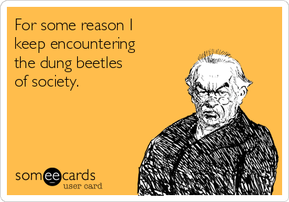For some reason I  keep encountering  the dung beetles  of society.