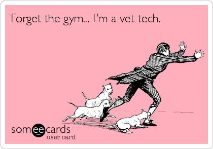 Forget the gym... I'm a vet tech.