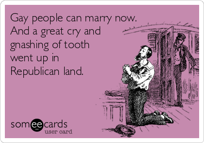 Gay people can marry now. And a great cry and gnashing of tooth went up in Republican land.
