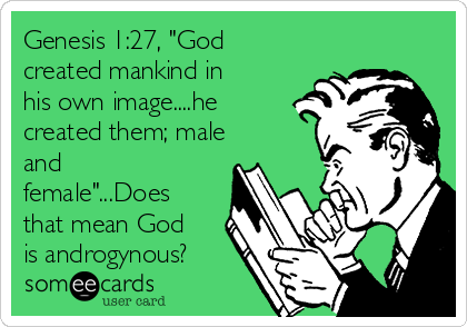 """Genesis 1:27, """"God created mankind in his own image....he created them; male and female""""...Does that mean God is androgynous?"""