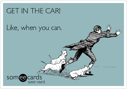 GET IN THE CAR!  Like, when you can.
